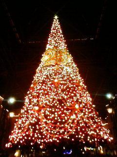 メリークリスマス! _b0130512_18171561.jpg
