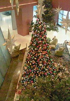 メリ-クリスマス♪_f0116812_8585564.jpg