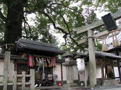 歳末風景3 新熊野神社_e0048413_2144583.jpg