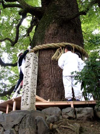 歳末風景3 新熊野神社_e0048413_21451349.jpg
