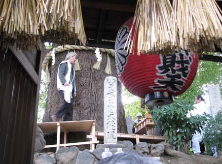 歳末風景3 新熊野神社_e0048413_2146047.jpg