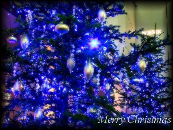 クリスマスによせて・・・_e0048332_19475472.jpg