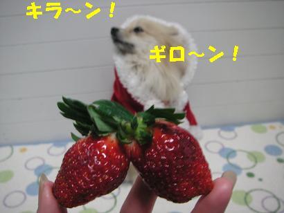 c0179136_128587.jpg