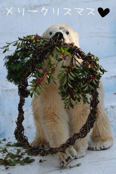 メリークリスマス♪_b0024758_1331791.jpg