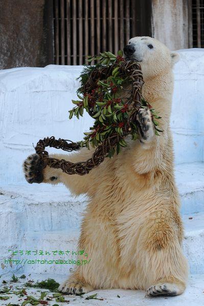 メリークリスマス♪_b0024758_1351452.jpg