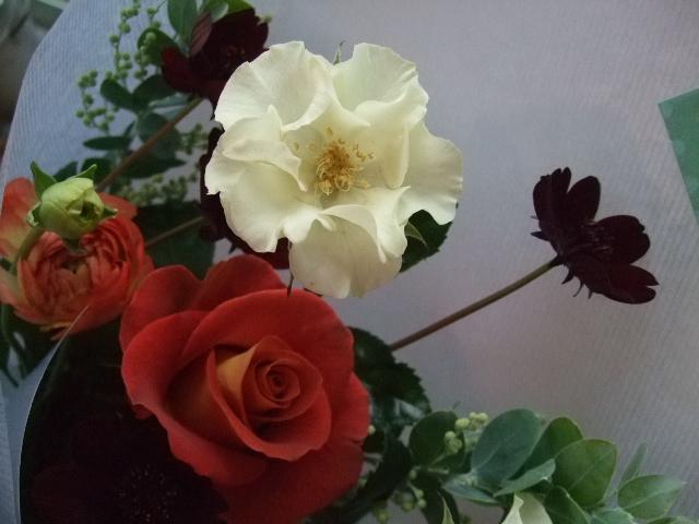 オークリーフ(クリスマスの小さな花束)_f0049672_15552552.jpg