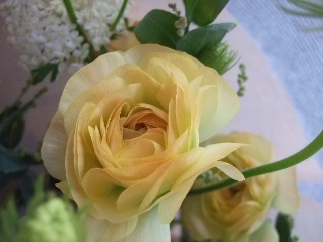 オークリーフ(クリスマスの小さな花束)_f0049672_1557567.jpg