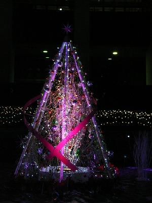 メリークリスマス_e0114895_15214374.jpg