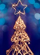 Merry Christmas! (足跡)_c0048713_0292175.jpg