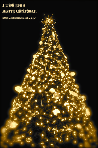 May your Christmas be merry and happy._f0100215_22395100.jpg