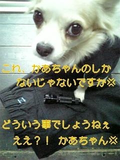 f0148927_16563061.jpg