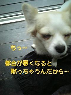 f0148927_16573841.jpg
