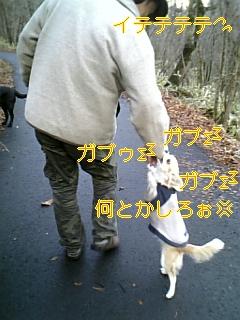 f0148927_16583847.jpg