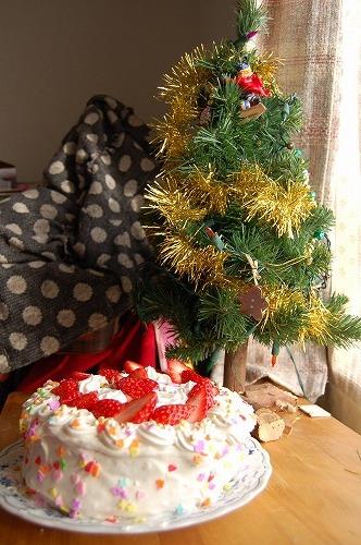 メリー・クリスマス!_b0097729_004718.jpg