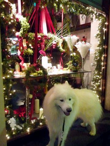 メリークリスマス!_c0062832_16471246.jpg