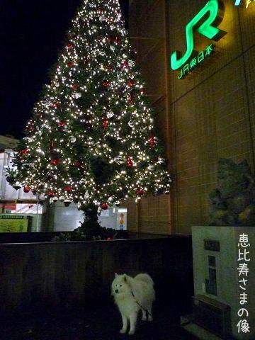 メリークリスマス!_c0062832_16471853.jpg