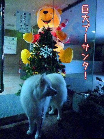 メリークリスマス!_c0062832_16472838.jpg
