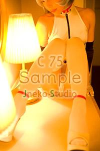 冬コミ75 新作 コスプレ ROM写真集 サンプルをアップしました☆_b0073141_192667.jpg