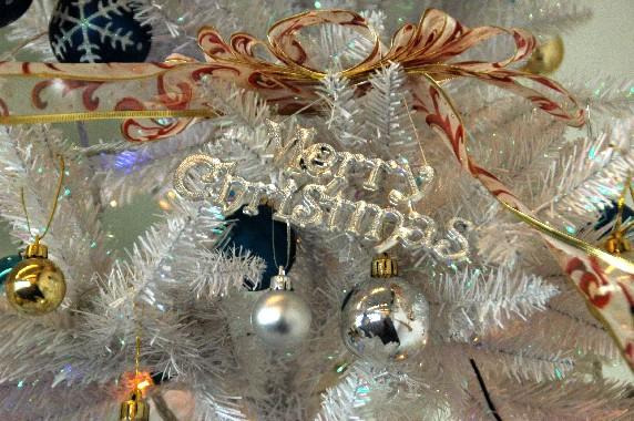 メリー・クリスマス_b0093754_0123411.jpg