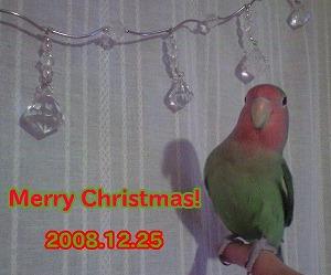 b0127466_2222550.jpg