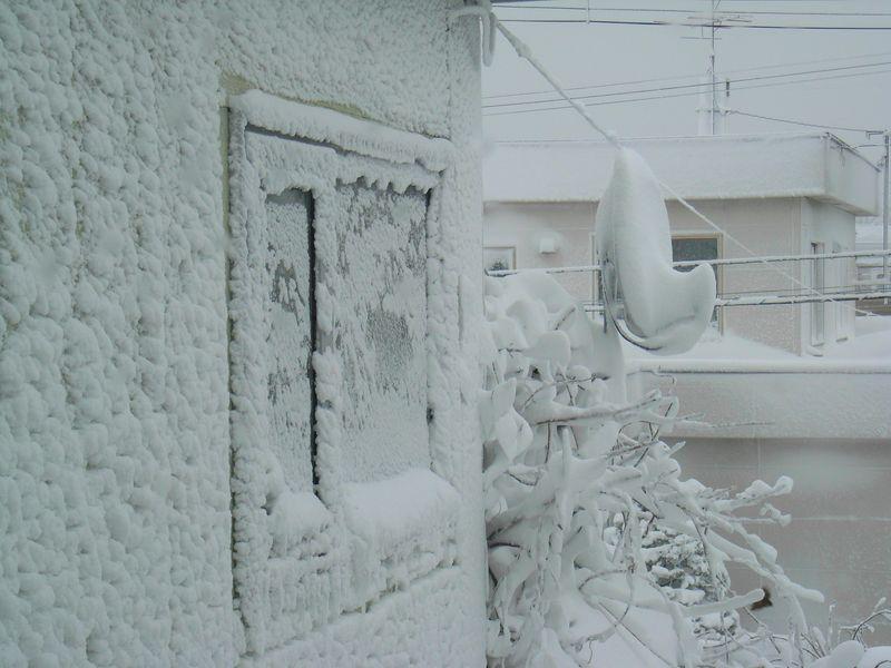 豪雪と寒波_c0025115_19271664.jpg