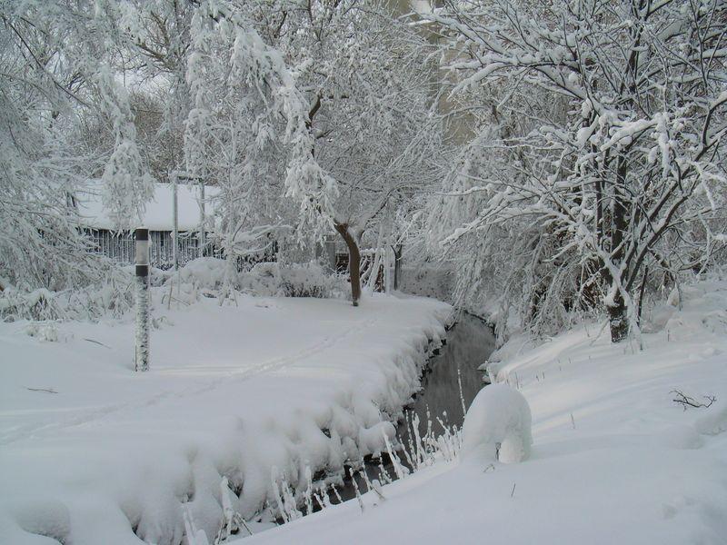 豪雪と寒波_c0025115_1929513.jpg