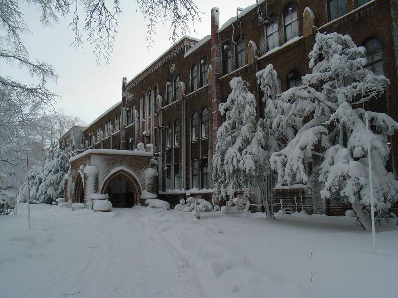 豪雪と寒波_c0025115_1930451.jpg