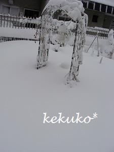 f0170524_12404675.jpg