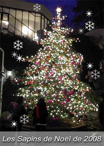Merry Xmas & 良いお年を・・・_b0017736_453727.jpg