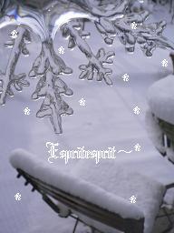 f0142141_12545311.jpg