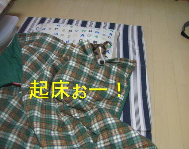 f0053952_16562697.jpg