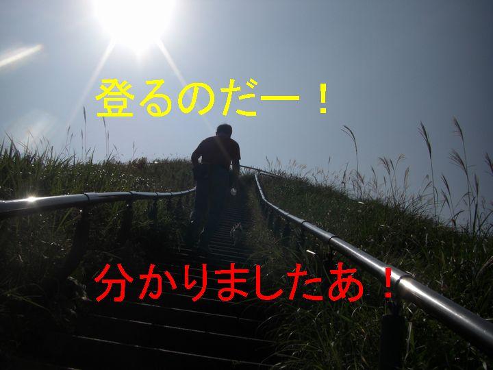 f0053952_1745864.jpg