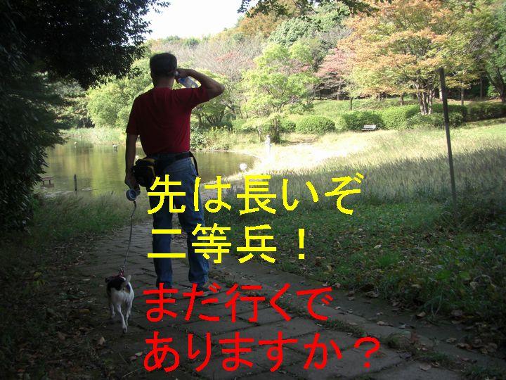 f0053952_177759.jpg