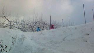 雪_d0139362_12172754.jpg