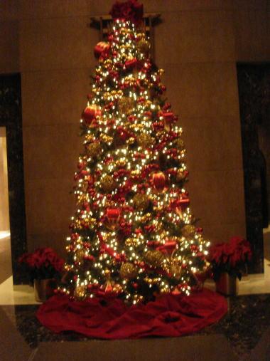 2008-12-25 クリスマスは晴れています_e0021965_1153721.jpg