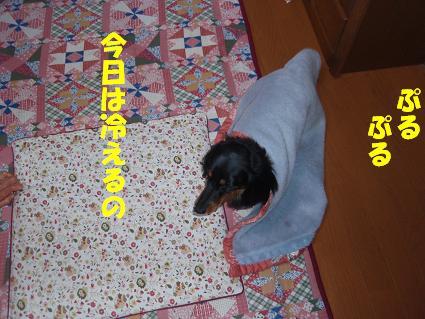 c0151866_1393676.jpg