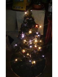 ♪クリスマスがぁ・・・♪_f0177390_1453111.jpg
