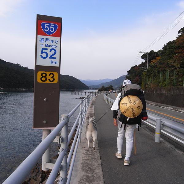 11月18日 おへんろ8日め by GX100_c0049299_2039371.jpg