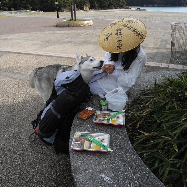 11月18日 おへんろ8日め by GX100_c0049299_20403581.jpg