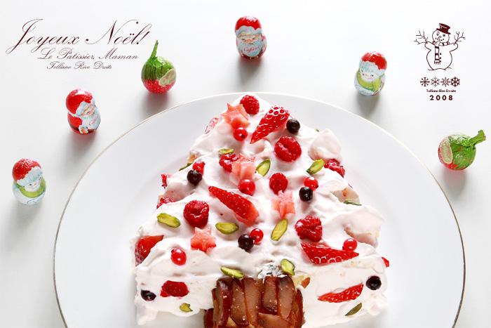 ママンのクリスマスケーキ_f0038408_23195324.jpg