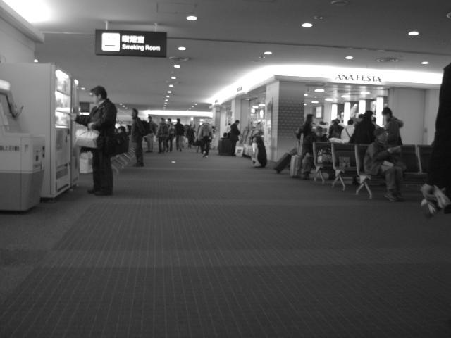 From Haneda to Sapporo_c0174913_2317820.jpg