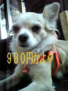 f0148927_18321685.jpg