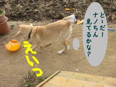 b0151748_20101592.jpg