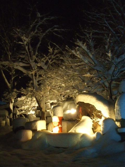 初雪!_a0099753_20214920.jpg