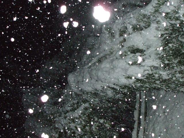 初雪!_a0099753_2024549.jpg
