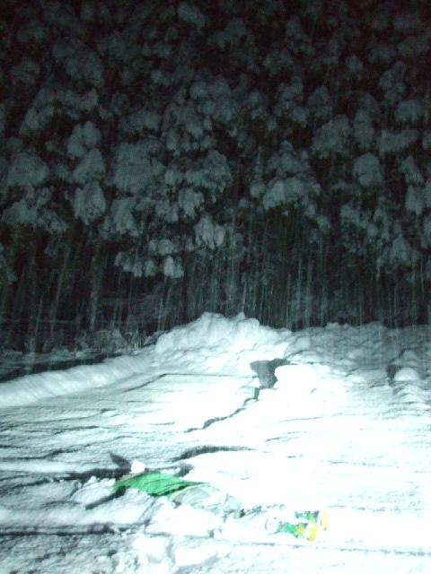 初雪!_a0099753_20291546.jpg