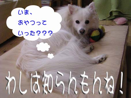c0105157_2044768.jpg
