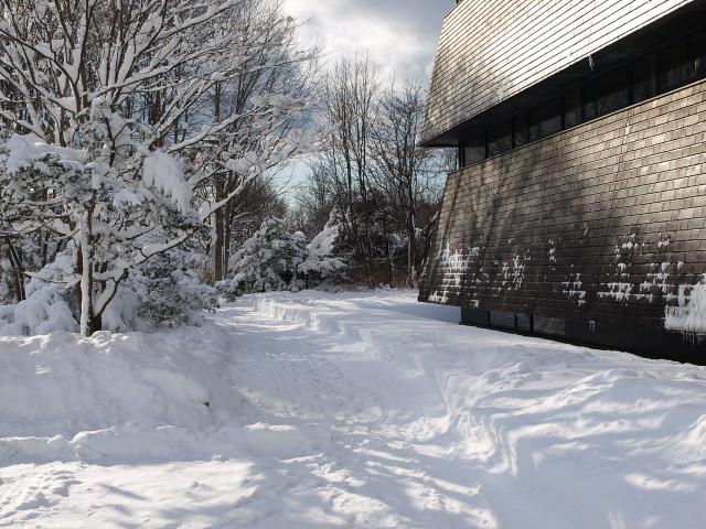 昨日の雪_d0153062_9371793.jpg