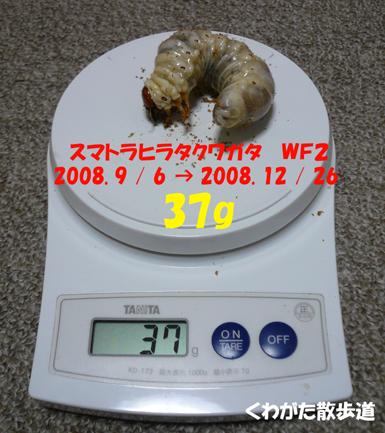 f0183484_1012666.jpg