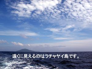 f0144385_2325870.jpg